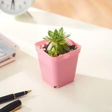 Nursery Plant Supplies by Wholesale Flower Pots Mini Flowerpot Garden 6pcs 55mm Plastic
