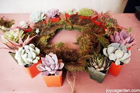 succulent wreath 5 easy steps to a living succulent wreath