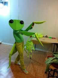 Halloween Bug Costumes Adorable Praying Mantis Costume Praying