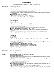 resume accounting manager sales director resumes accounting director resume cv writing for