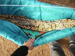to make a diy camping hammock underquilt from a sleeping bag