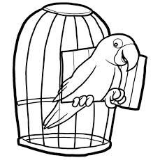 2164 coloring pages images coloring pages