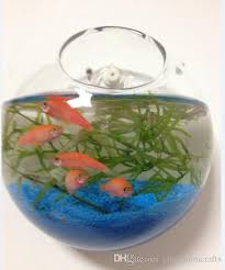 set of 3 wall hanging glass terrarium bubbles wall fish tank