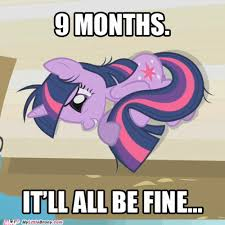 Pony Memes - my little brony page 6 brony memes and pony lols my little