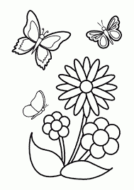 drawing of butterfly with flower drawing of sketch