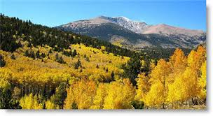 Colorado Wedding Venues Find Colorado Wedding Locations Wedding Venues And Reception Halls