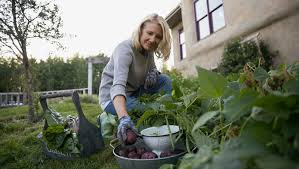 tips for growing your own vegetable garden