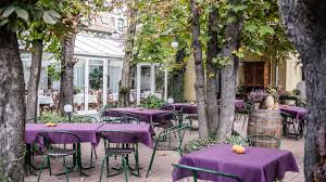 visit the lovely winter garden of budapest u0027s historic jardinette