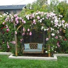 Cheap Pergola Ideas by Best 25 Garden Arbor Ideas On Pinterest Arbors Vegetable
