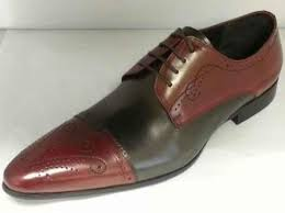 how to for dress shoes exotic skin shoes care suggestions