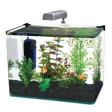 halloween fish tank background aquariums fish tanks kmart