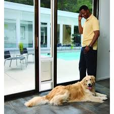 patio doors with dog door built in patio panel pet door choice image glass door interior doors