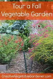 60 best home gardening images on pinterest vegetable garden