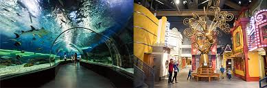 which is better museum of curiosity or living planet aquarium
