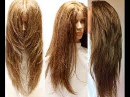 long layered cuts back long v layered haircut intended for your hair hairstyles pictures