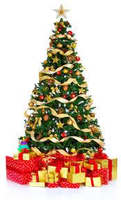 christmas fun facts the sas honors program blog