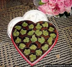 best valentines day gifts valentines gifts valentines day gifts gorgeous