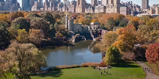 13 ways to entertain kids in central park huffpost