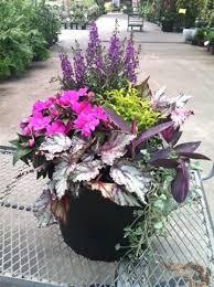Summer Container Garden Ideas Container Gardening Sun Ideas Home Dignity