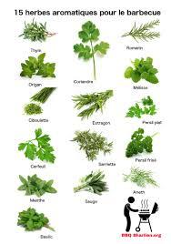herbes cuisine les herbes de cuisine 59 images comment utiliser les herbes de