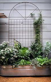 Trellis Garden Ideas Steel Garden Trellises Financeintl Club