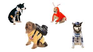 Dog Halloween Costumes Kids 10 Costumes Dogs 2017