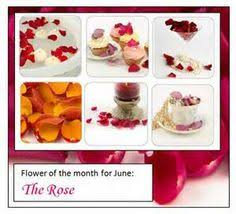 The Month Of June Flower - month of june flower june pinterest search flower and june