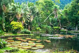 World Botanical Gardens 15 Breathtaking Botanical Gardens To Visit This Season Photos