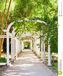 Photos De Pergola Pergola In Botanical Garden In Rio De Janeiro Royalty Free Stock