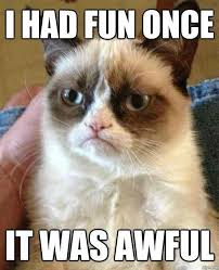 Grumpy Cat Meme I Had Fun Once - grumpy cat s first meme that went viral i wonder if she is tired of