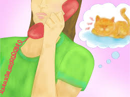 3 ways to cool your cat down in the summer wikihow
