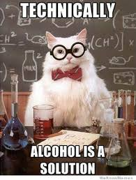 Memes About Alcohol - chemistry cat on alcohol weknowmemes