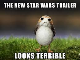 Potoo Bird Meme - potoo bird meme best image about bird 2017