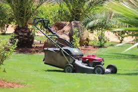 bolens lawn mower review what u0027s the verdict sproutabl