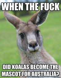 Kangaroo Meme - most funniest kangaroo meme photo wishmeme