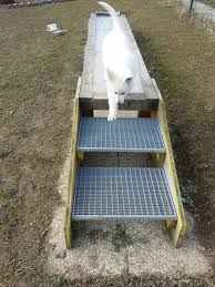 gitter treppe der welpenplatz blindenfuehrhundes webseite