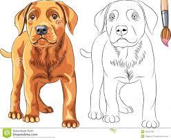 coloring book of smiling dog german shepherd stock images image