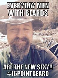 Memes About Beards - everyday men with beards are the new sexy beard memes pinterest
