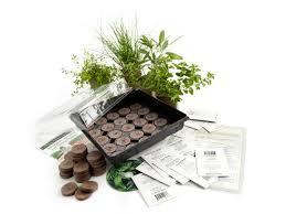 indoor herb garden kits to grow herbs indoors hgtv culinary indoor herb garden starter kit grow basil dill cilantro