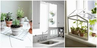 kitchen window herb garden 18 judul blog