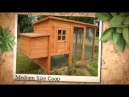 Building Backyard Chicken Coop Chicken Huts How To Build Backyard Chicken Coops Youtube
