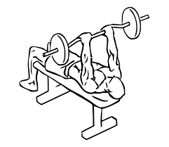 file decline ez bar triceps extension with barbell 1 svg