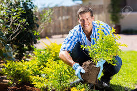 gardener stock photos royalty free gardener images and pictures