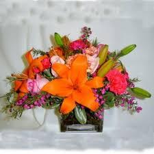 Chapel Hill Florist Chapel Hill Nc Florists Flowers Chapel Hill Nc Victoria Park
