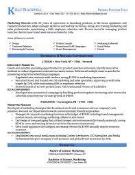 Resume Templates It Professional Career Level U0026 Life Situation Templates Resume Genius