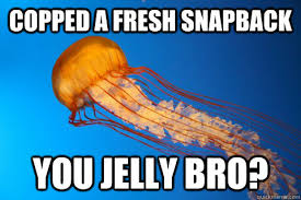 You Jelly Bro Meme - copped a fresh snapback you jelly bro jealous jellyfish quickmeme