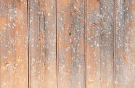 painted wood wall once painted orange fading wooden wall background texture www