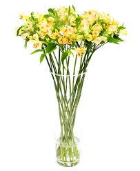 weekly flower delivery weekly flower delivery alstroemeria yellow