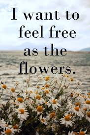 Flower And Love Quotes - best 25 flower child quotes ideas on pinterest dandelion quotes