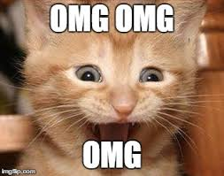 Omg Memes - excited cat meme imgflip